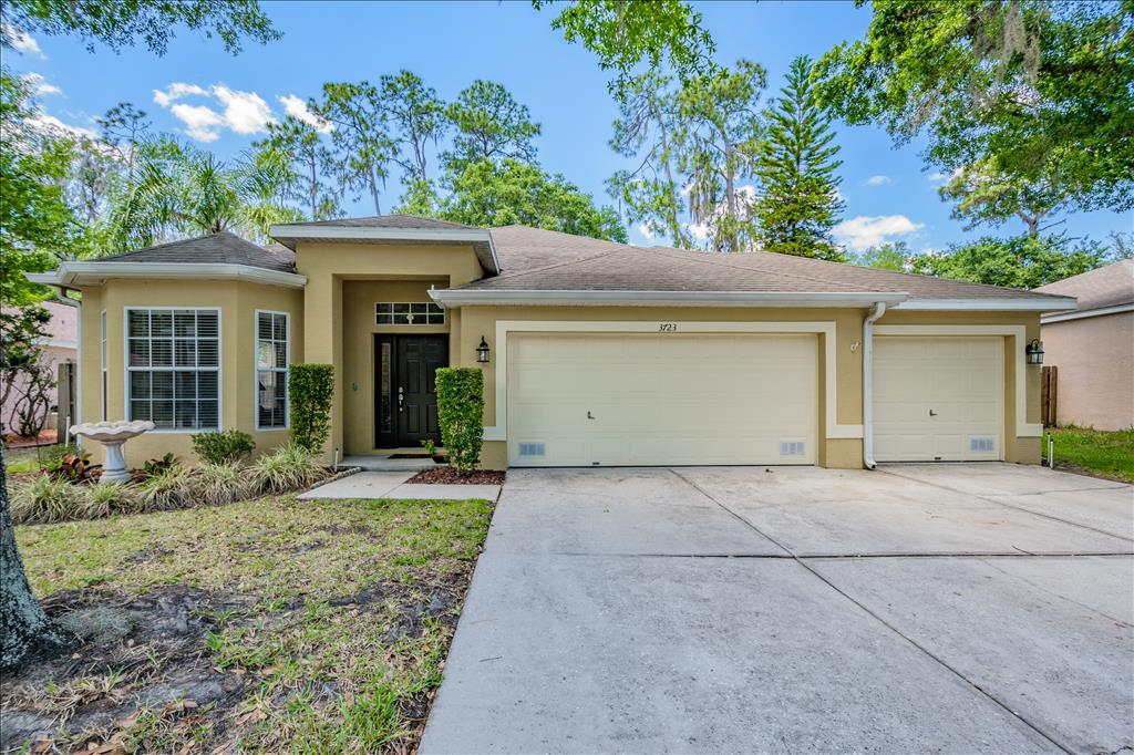 Photo of 3723  Hollow Wood Dr  Valrico  FL