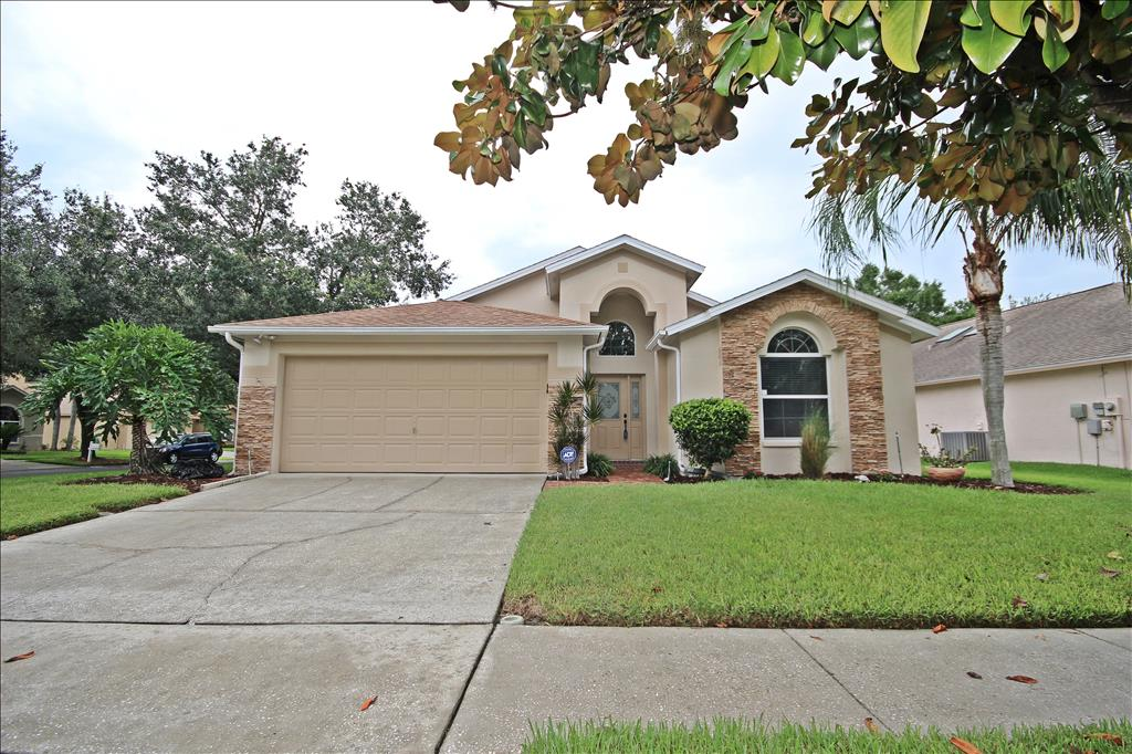 Photo of 3311 Red Mulberry Ct  Tampa  FL