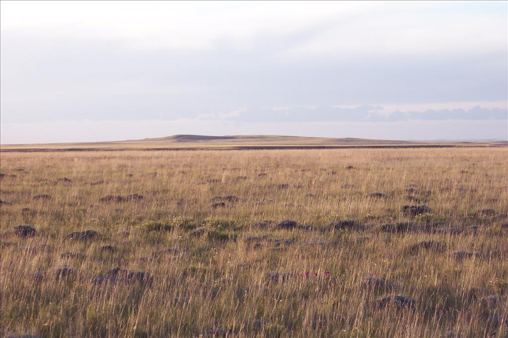 Photo of TBD FIR WAY MED BOW TR46A  ROCK RIVER  WY