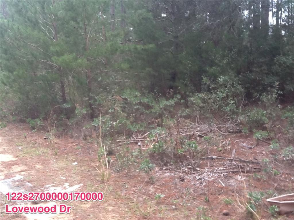 Photo of 0 Lovewood Dr  Navarre  FL