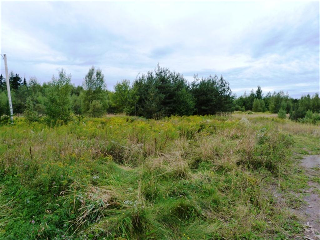 Photo of Lot  11-10 Rte 134 2 acres  Shediac Cape  NB