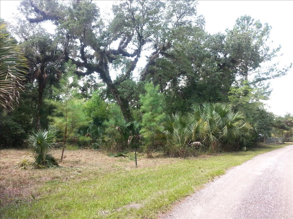 N Caroline Run, Sanford, FL 32773
