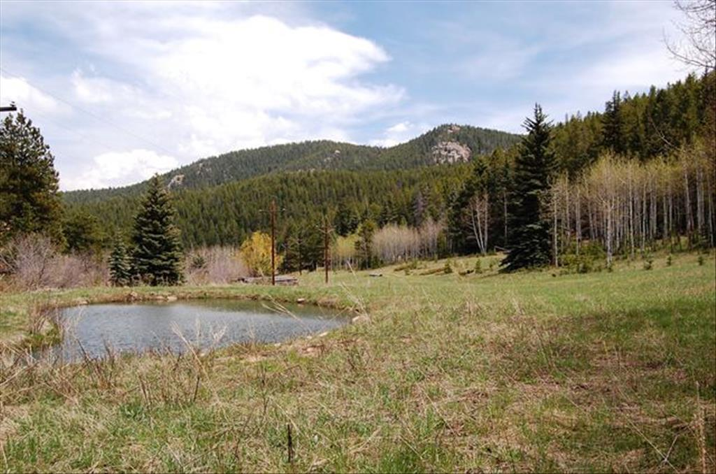 7579 Whispering Brook Trl, Evergreen, CO 80439