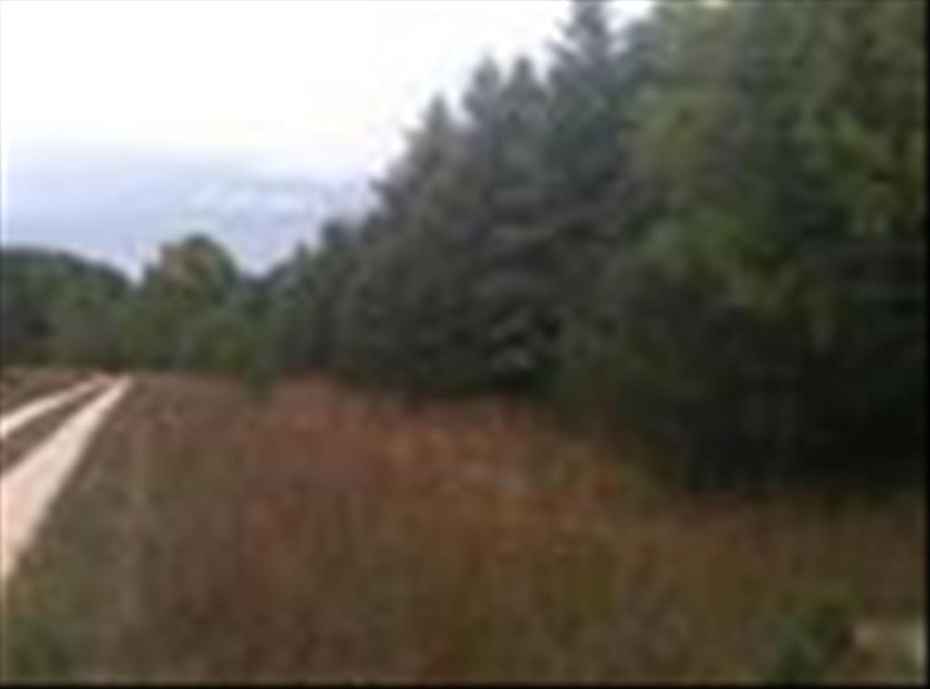 Deer Track Trail, Cadillac, MI 49601