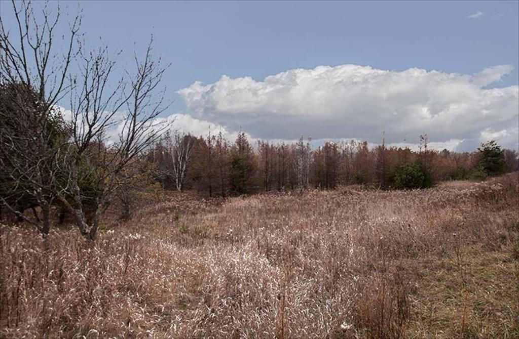 44 Acres Bay De Noc Drive, Menominee, MI, 49858 is for sale - $69,900