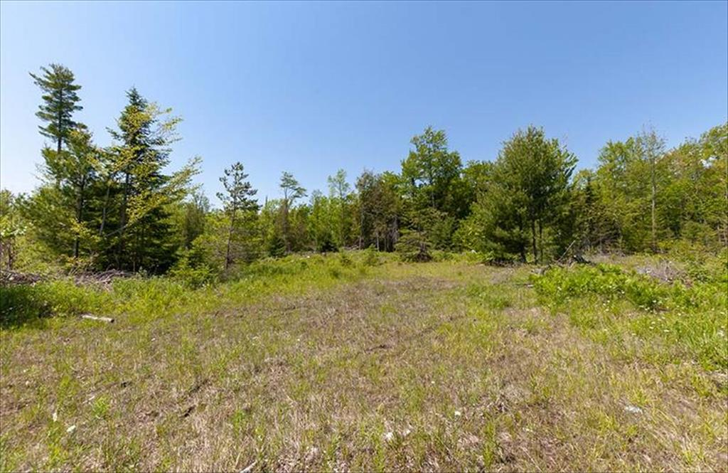 200 Acres Hayward Lake Rd, Menominee, MI, 49858 is for sale - $179,900